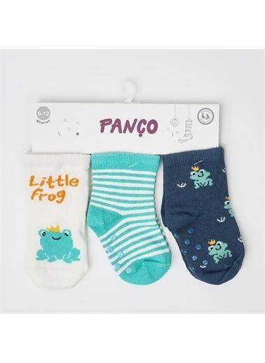 Panço 0-3 Yaş Erkek 3 lü Çorap 2012BB11015 Renksiz